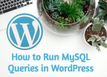 How to Run MySQL Queries in WordPress