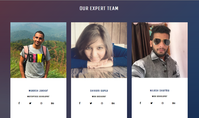 Beautiful bootstrap responsive our team template widget