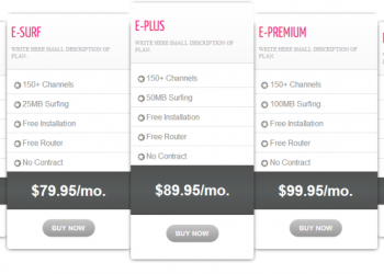 Flat responsive pricing table for internet digital service