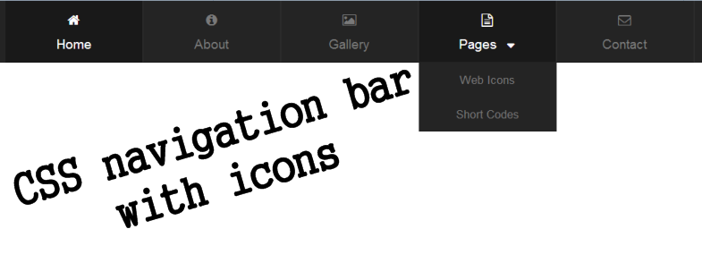 CSS navigation bar with icons