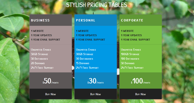 Stylish pricing table template free download