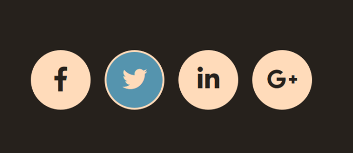 Social Media Icons hover effect