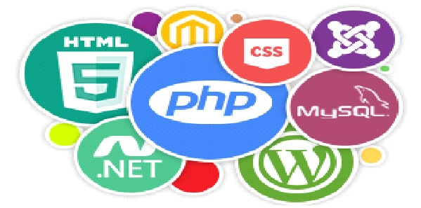 5 Best Programming Languages Used in Web Development