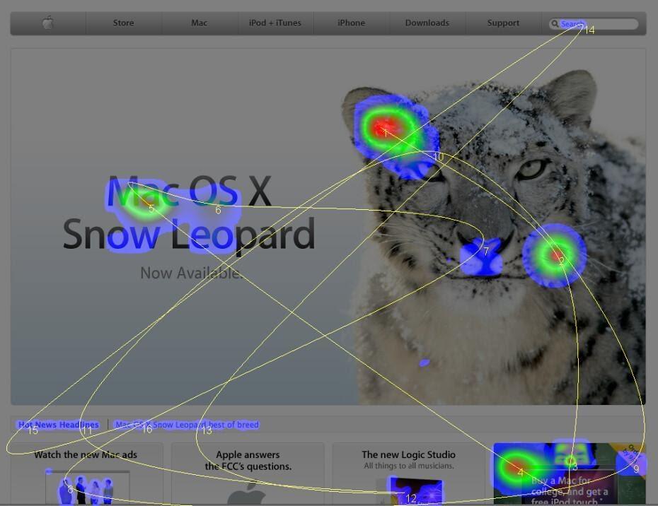 A heat map of an Apple website featuring a snow leopard.